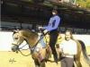 flame-stealer-ea-santa-barbara-champion-western-pleasure-jr-horse