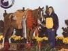 serannada-national-champion-top-ten-trail-horseweb