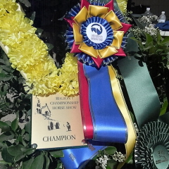 2011 Region One Championships