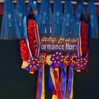 2013 Scottsdale Arabian Show Results